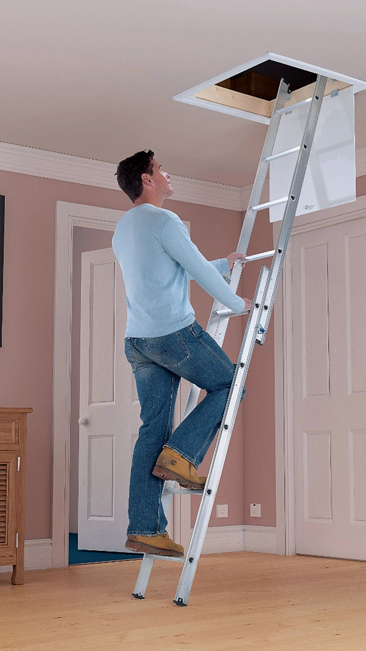 2 section loft ladder around blue walls
