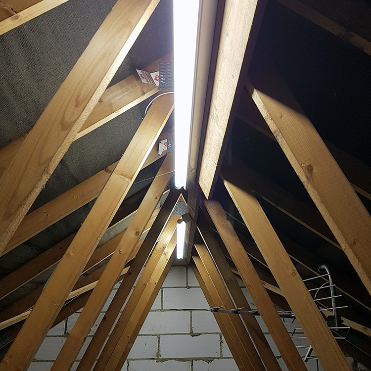 Loft tube lighting with wooden support beams
